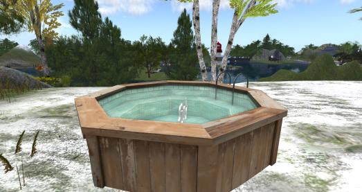 hot tub_005