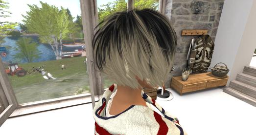 hår D_002