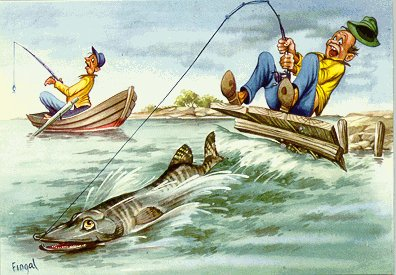 fiskare-fingal