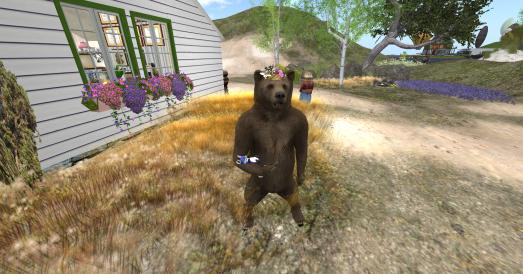 björn_001 - Kopia